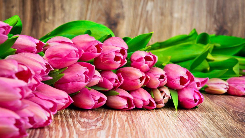 Поздравляем с 8 марта♥